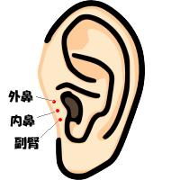 花粉症に効くツボ 外鼻・内鼻・副腎 - 整体室ReBody